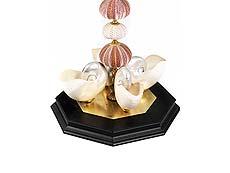 Detail images: Komposition aus Seeigeln und Nautilus