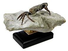 Detailabbildung: Bemerkenswert gut erhaltene fossile Krabbe