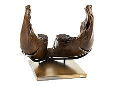 Detail images: Imposanter Unterkiefer eines Mammuts