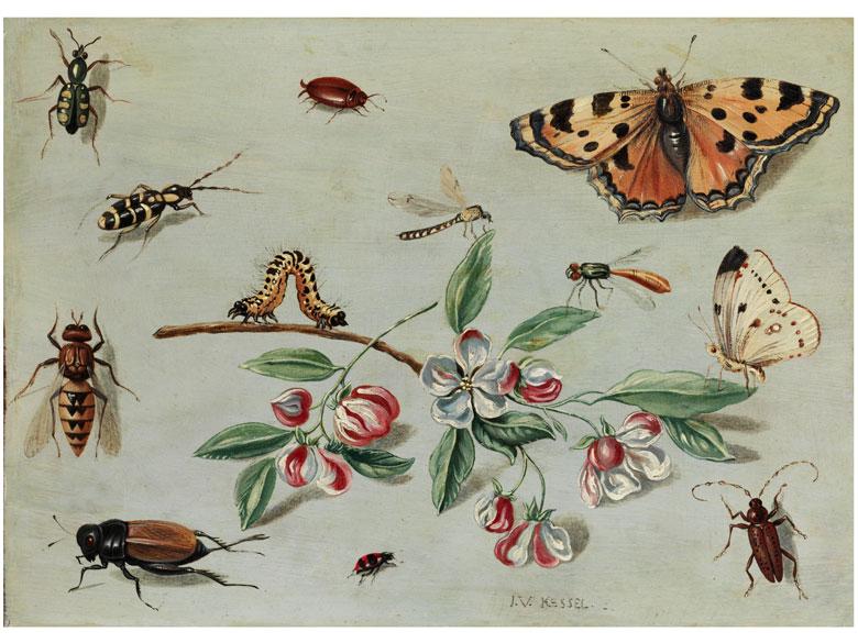 † Jan van Kessel d. Ä., um 1626 Antwerpen - 1679 Antwerpen