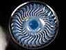 "Detail images: Lalique-Teller ""Actinia"""