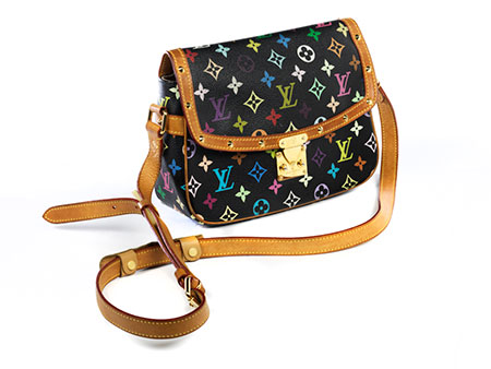Louis Vuitton Multicolor Sologne Bag
