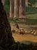 Detail images: Antonio Sminck Pitloo, 1791 Arnhem - 1837 Neapel, zug.
