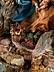 Detailabbildung: Große neapolitanische Krippe