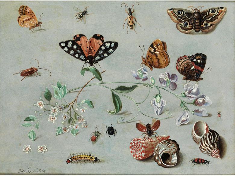 † Jan van Kessel I, um 1626 – 1679