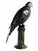 Detail images: Russische Silberfigur eines Papageien