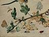 Detail images: Jan van Kessel I, um 1626 – 1679