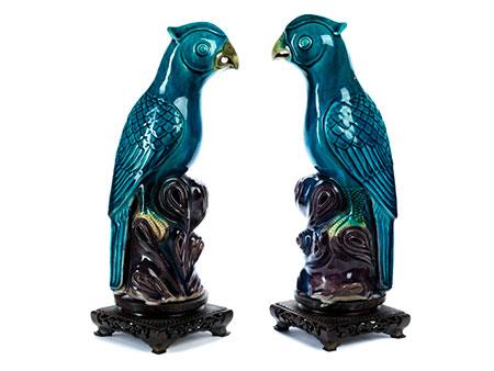 Zwei blaue chinesische Papageien
