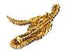 Detail images: Saphir-Diamant-Vogelbrosche von Jahan