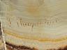 Detail images: L. Maupertuis, Künstler des 20. Jahrhunderts