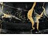 Detail images: Bildhauer des Jugendstil