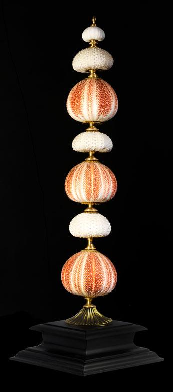 Elegante Komposition mit Seeigeln