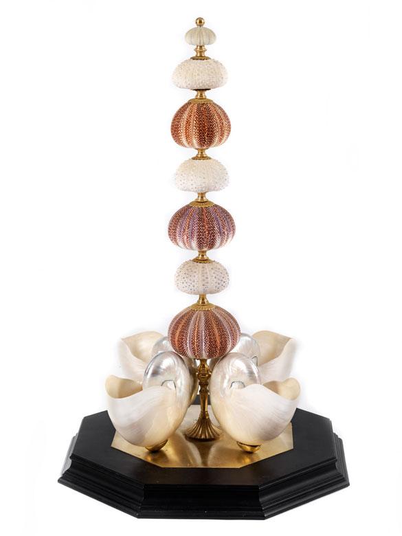 Komposition aus Seeigeln und Nautilus