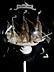 Detail images: Flaschenschiff aus Elfenbein