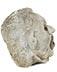 Detail images: Brunnenmaske