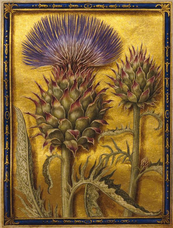 Sandro Botticelli Toskanischer Renaissance Maler Portrats Toskana