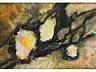 Details: Maler des 20. Jahrhunderts