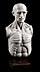 Details: Marmorskulptur in Form eines anatomischen Modells
