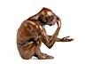 Detail images: Bronzefigur eines sitzenden Affen