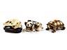 Details: Drei japanische Elfenbeinschnitzobjekte