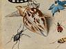 Detail images: Jan van Kessel I, um 1626 Antwerpen – 1679 ebenda