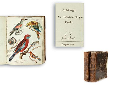 Zwei Originalbände Abbildungen Naturhistorischer Gegenstände