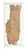 Details: Drei Papyrus Handschriften