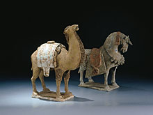 Kamel der Qui-Dynastie (Wei)
