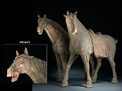 Ein Paar Tang-Pferde