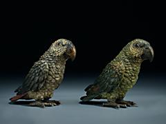 Paar Papageien aus Wiener Bronze