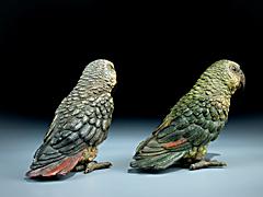 Detail images: Paar Papageien aus Wiener Bronze