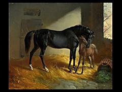 Benno Adam 1812 - 1892