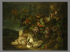 Angelo Maria Crivelli, Maler des 18. Jhdts.