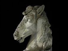 Detail images: Pferdekopf