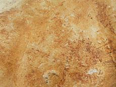 Detail images: Kamel der Tang-Dynastie
