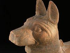 Detail images: Mittelgroßer Hund der Han-Dynastie