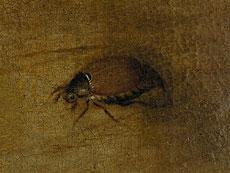 Detail images: Isaac Soreau 1604 - 1638, zug.