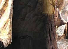 Detail images: Schnitzfigur einer frühgotischen Madonna