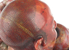 Detail images: Äußerst feine chinesische Lohan-Specksteinfigur
