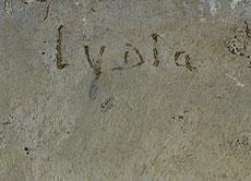 Detail images: Lydia Mandel