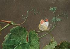Detail images: Jan Frans Eliaerts, 1761 - 1848 Antwerpen