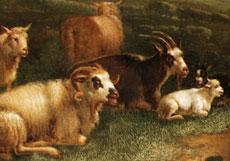 Detail images: Roger van de Pol, 1886 Utrecht