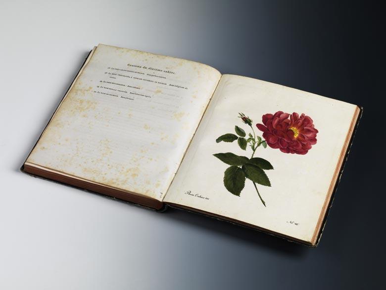Carl Gottlob Roessig, 1752 - 1806