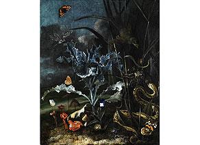Otto Marseus van Schrieck,  1619 - 1678