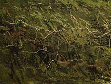 Detail images: Jan Willem van Borselen, 1825 - 1892