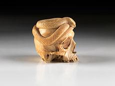 Detail images: Schlangenschädel