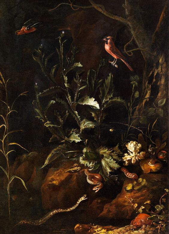 Otto Marseus van Schrieck, 1619 Nimwegen - 1678 Amsterdam, zug.