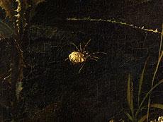 Detail images: Otto Marseus van Schrieck, 1619 Nimwegen - 1678 Amsterdam, zug.