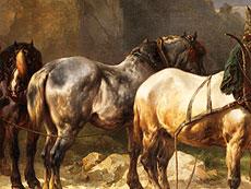 Detailabbildung: Wouterus Verschuur, 1812 - 1874
