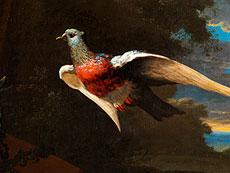 Detail images: Melchior de Hondecoeter, 1636 Utrecht - 1695, zug.